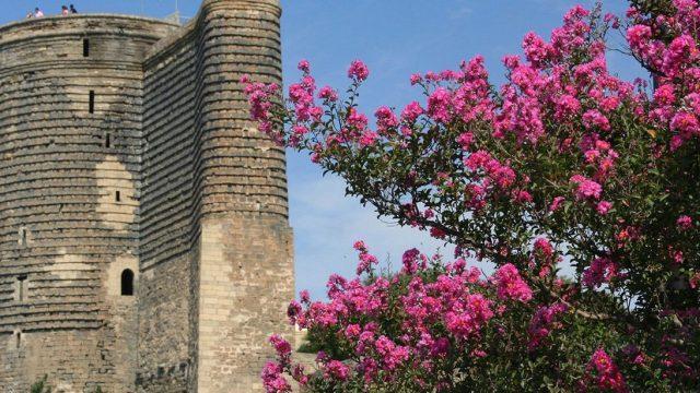 Maiden Tower<br> <mark> 10% Discount </mark></br>